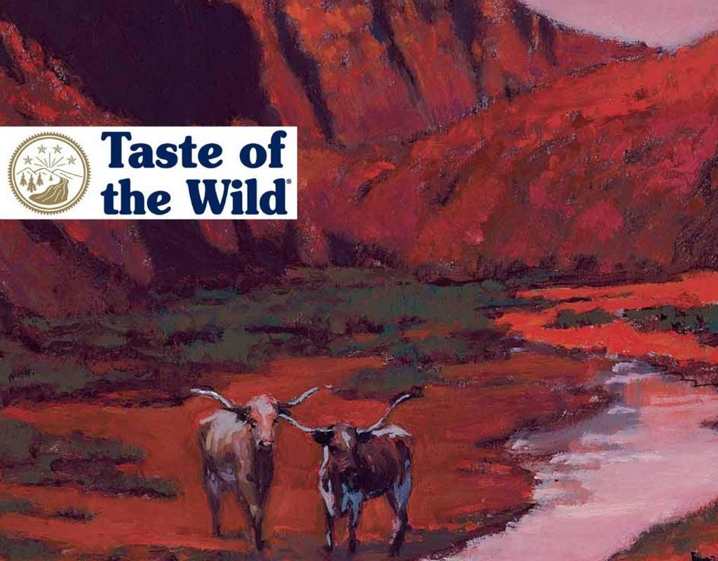 Sac de hrană uscată pentru câini Taste of the Pine Forest