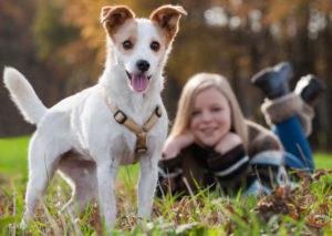 Câinii adoră să-și petreacă timpul în preajma copiilor