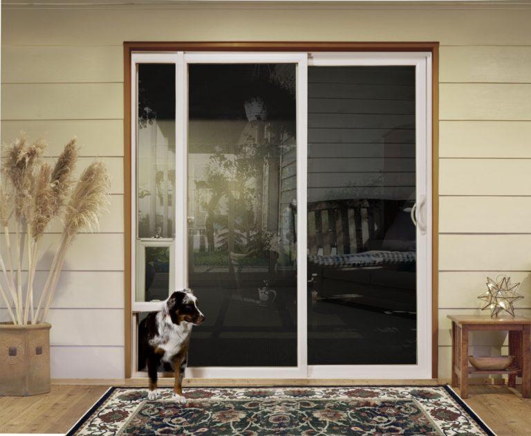 Acest câine folosește propria lui ușă pentru a intra și a ieși din casă