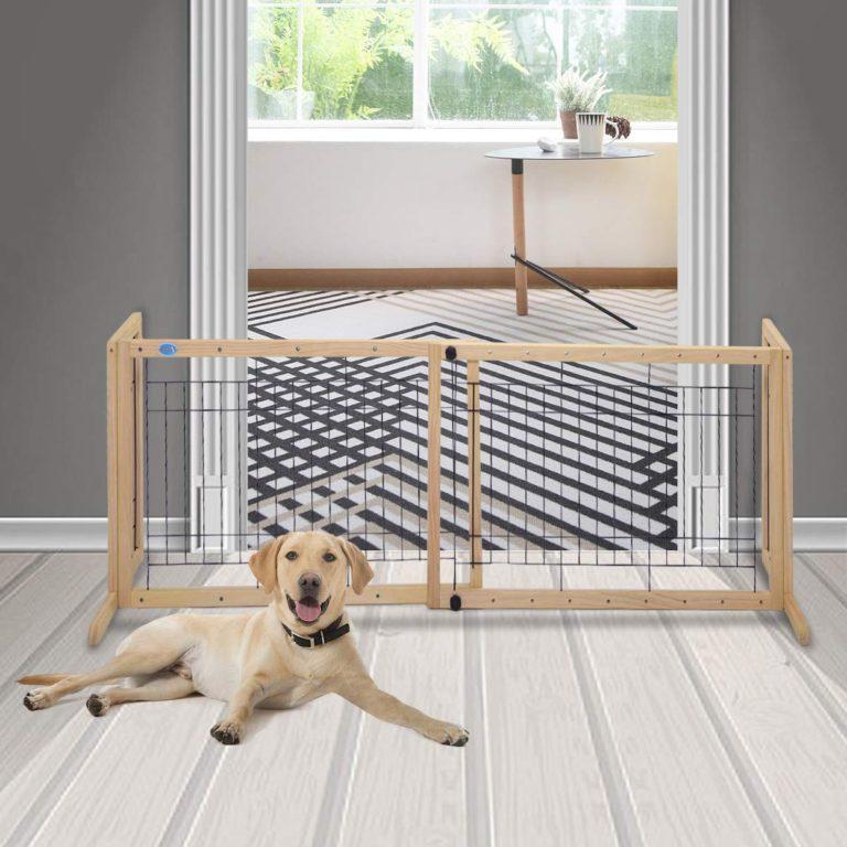 Porți de siguranță pentru câini
