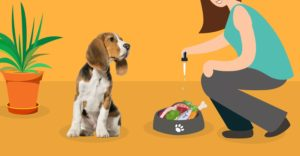 Stăpână adaugă picături de ulei CBD peste hrana câinelui