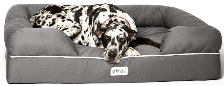 Câine de talie mare se odihnește într-un pat special