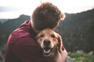 Stăpân își îmbrățișează Labradorul