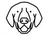 Ilustrație Labrador